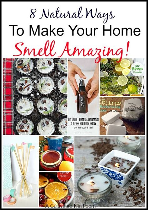 how to clean ins 17 best images about homemaking tips tricks on pinterest