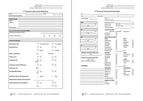 printable ultrasound worksheets renal artery ultrasound worksheet the best and most