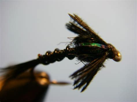 black nymph pattern how to tie ted s early black stonefly nymph pattern