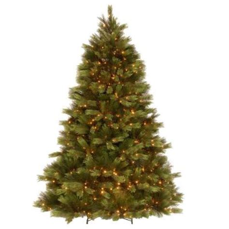 home depot real christmas tree types of real trees the home depot