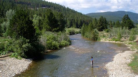 fly fishing colorado s south colorado trout fisher unforgettable fly fishing trips
