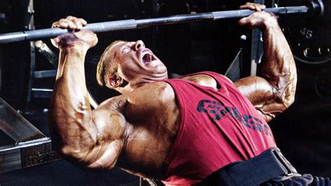 what is a good bench press for my weight lessons from the dead zone the bench t nation