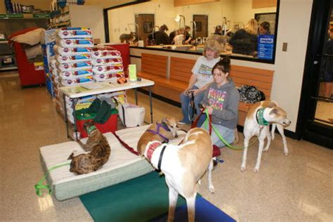 best 28 pet stores in concord nc hott dogs provides