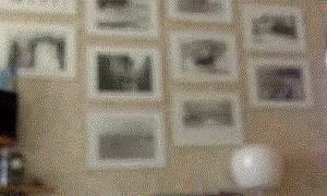imagenes gif zarpados zarpados gifs taringa