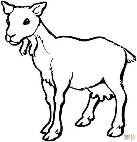 cartoon goat coloring page female goat coloring page free printable coloring pages