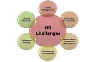 Hr in the healthcare sector facing down the challenges in 2012