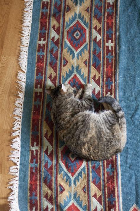 thrift rugs thrift store score a kilim rug 187 green diy