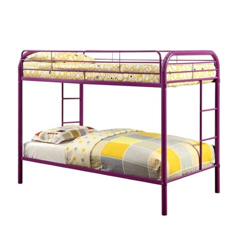 purple bunk beds furniture of america capelli metal bunk bed