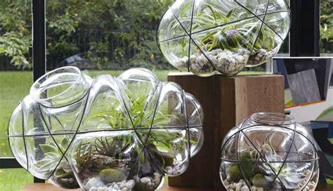 Mini Indoor Garden