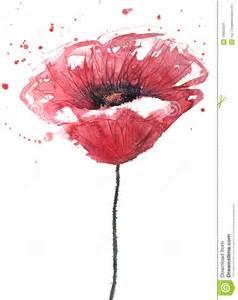 Modern Minimalist Artist poppy flower watercolor royalty free stock image image