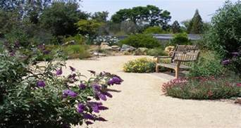 Of California Botanical Garden by The 50 Most Beautiful College Arboretums Best College