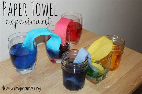 How To Make Paper Science Project - paper towel experiments for