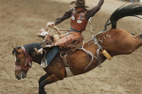 best free rodeo wallpapers hd