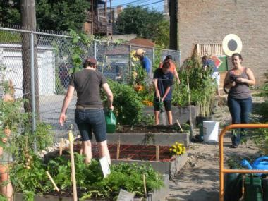 Peterson Garden Project by Ready Set Garden Registration Opens For Peterson Garden