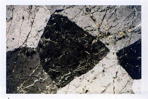nepheline in thin section nepheline bryn mawr mineralogy wiki