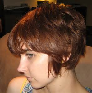 hair styles while growing into a bob image hairstyles while growing out short hair download