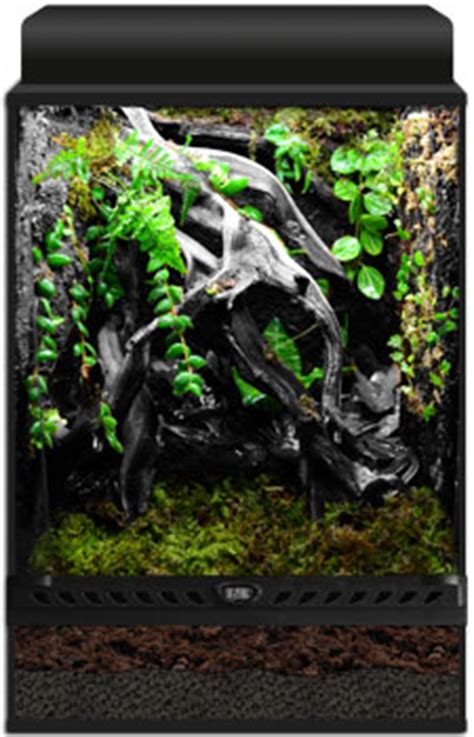 neherp vivarium builder  gallon vertical enclosure