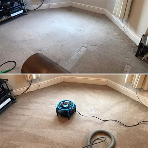 Upholstery Cleaning Canberra by Enviroclean Carpet Cleaning Canberra Carpet Vidalondon
