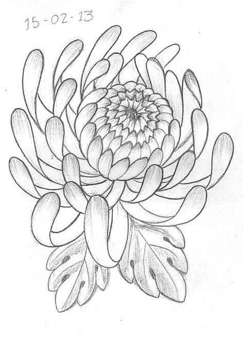 chrysanthemum flower tattoo designs sketch a day february 2013