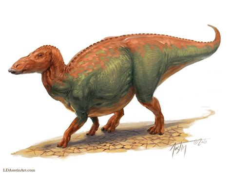 dinosaurs with special reference to the american museum collections books anatotitan pictures facts the dinosaur database
