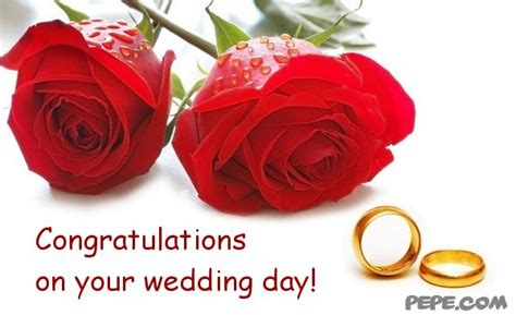 congratulations on ur wedding day vildana eldar wedding celebrations page 5 4149442