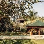 Kreatif Dan Dinamis Dengan Batu Alam 4 inspirasi taman tropis minimalis di rumah rumah dan