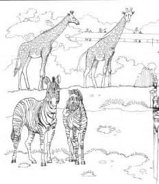 zoo coloring pages zoo coloring pages for coloringpagesabc