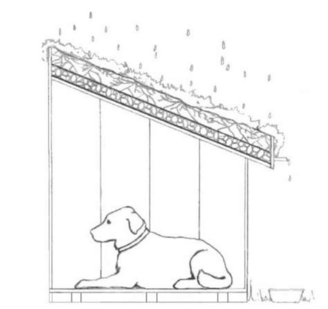 dog house diagram eco friendly prefabs for pets greenrrroof animal homes diagram of green roof dog