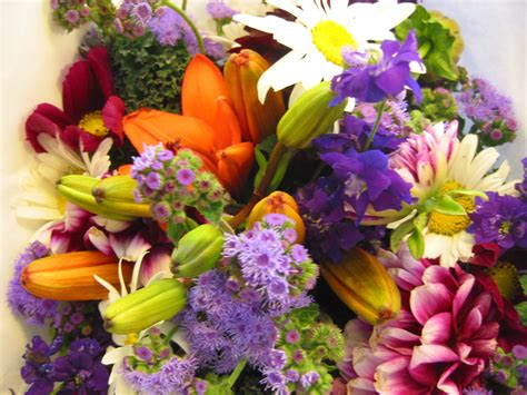 How To Preserve Fresh Flowers - preserving fresh flowers with bleach flowers magazine