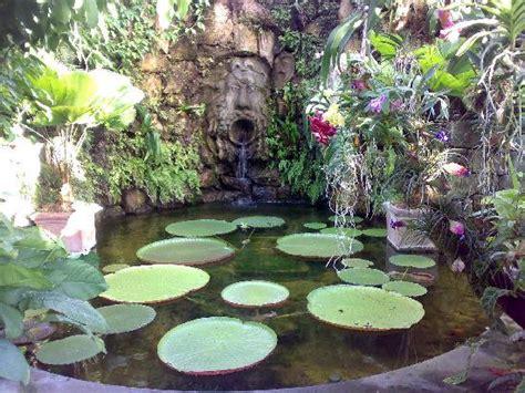 giardini mortella prezzi giardini la mortella foto di villa marialuisa forio