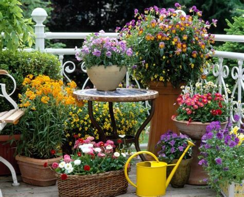 patio and garden ideas this and that in my treasure box spring inspiration