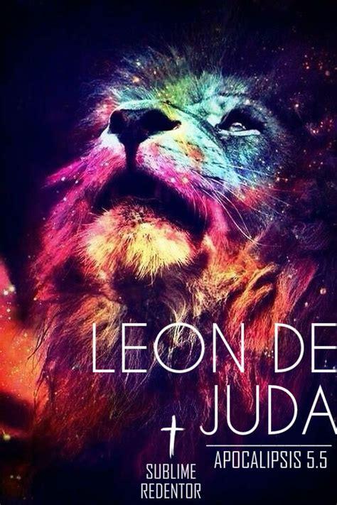 imagenes de leones tumblr imagenes de leones tumblr