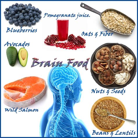 how to feed a brain nutrition for optimal brain function and repair books best brain foods integrative clinical resources inc