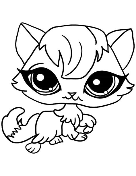 baby animals with big eyes coloring pages animal eyes coloring pages big eyes coloring page animals