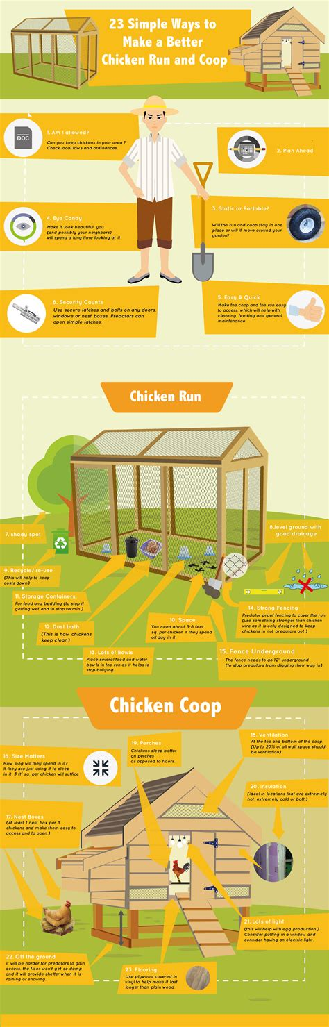 keeping free range chickens in your backyard 100 keeping free range chickens in your backyard