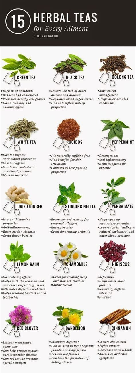 Everyday Detox Tea Acne by Best 20 Weight Loss Diets Ideas On Weight
