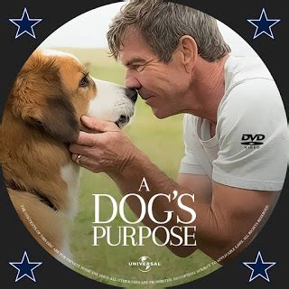 a s purpose rating a s purpose dvd label cover addict free dvd and bluray covers