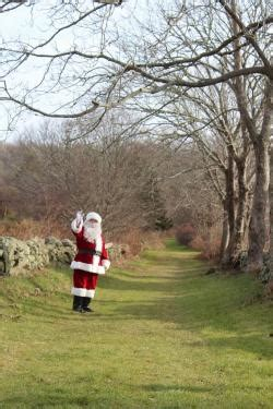 best christmas tree farm ri your own in southeastern ma semap