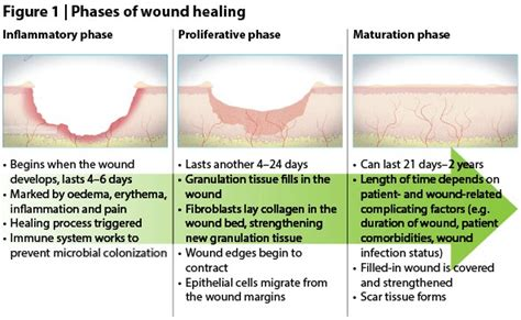 healing your attachment wounds how to create and lasting intimate relationships books stalled wound and wound healing a brief overview