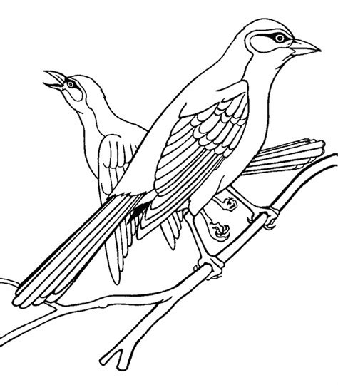 baltimore orioles coloring pages az coloring pages