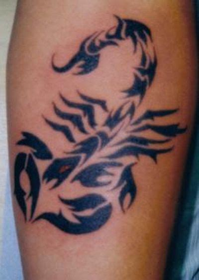 pretty scorpion tattoo designs scorpion tattoos design like cool tattoos