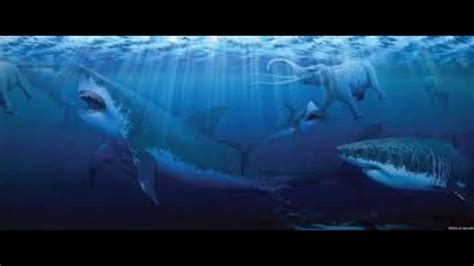 megalodon sharks still lives evidence that megalodon is not extinct megalodon shark still alive