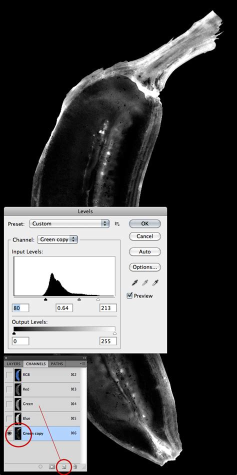 tutorial photoshop x ray quick tip how to simulate x ray photography in photoshop