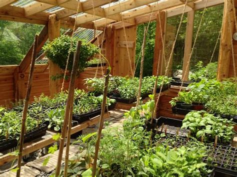 Earthbank Home Plans how to build an earth sheltered greenhouse natural