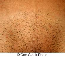 femme pubis rase aine rasage raser femme entrecuisse elle images de