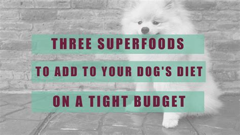 Superfoods To Add To Your Diet by Three Superfoods To Add To Your S Diet On A Tight Budget