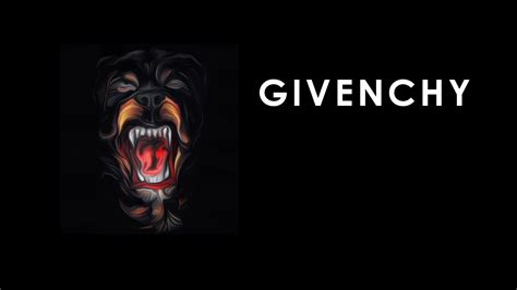 givenchy rottweiler givenchy www imgkid the image kid has it