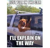 20 Best Body Shop Humor Images On Pinterest  Car