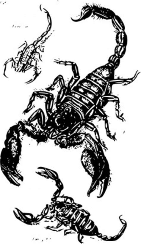 Schwarze Skorpione ClipArt-Vektor-ClipArt-Kostenlose