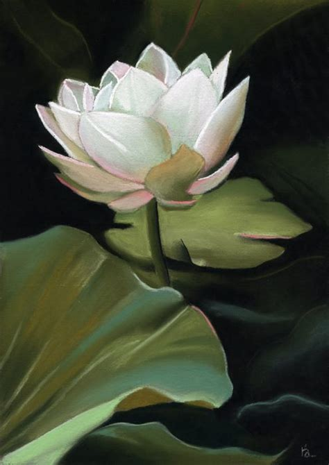 lotus flower pastel painting sold ria hills